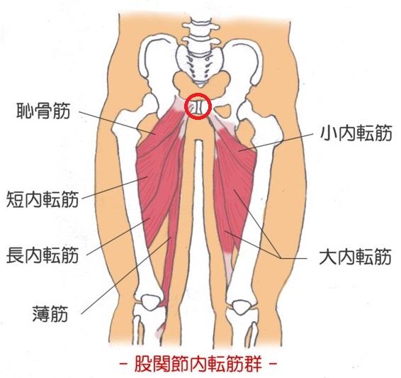 股関節 の 痛み 妊婦